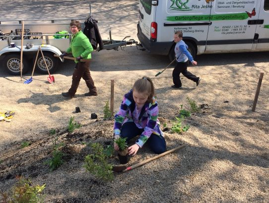 Kinderaktion Hügelbepflanzung Mai 2017